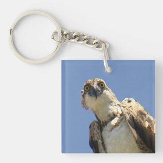 Osprey Watching Keychain