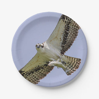 Osprey with a fish paper plate