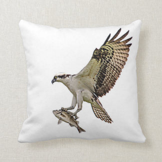 Osprey with a fish pillow