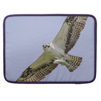 Osprey with a fish sleeves for MacBook pro