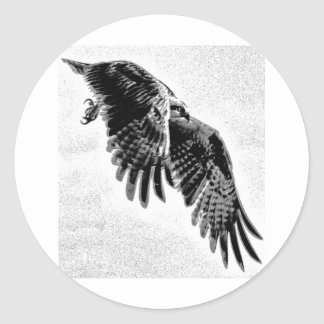 Osprey with wings outstretched. classic round sticker