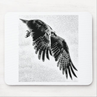 Osprey with wings outstretched. mouse pad