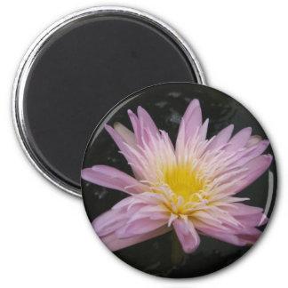 Ostara 2 Inch Round Magnet