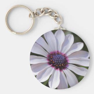 Osteospermum Basic Round Button Keychain