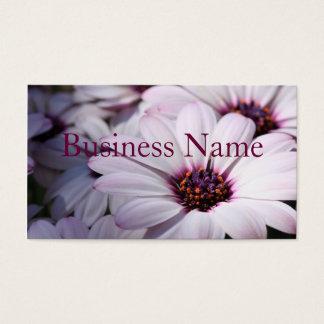 Osteospermum Business Card