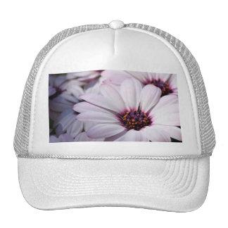 Osteospermum Trucker Hat