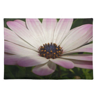 Osteospermum: Whiter Shade of Pale Placemat