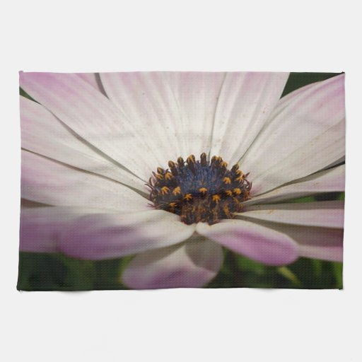Osteospermum: Whiter Shade of Pale Towels