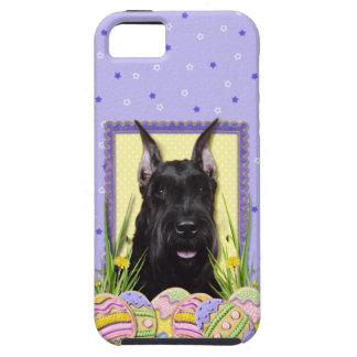 Osterei-Plätzchen - Schnauzer iPhone SE/5/5s Case