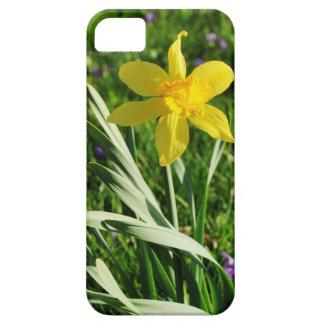 Osterglocke on a meadow iPhone SE/5/5s case