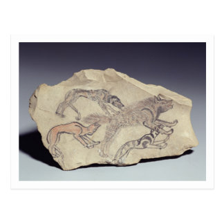 Ostracon depicting a dog chasing a hyena (limeston postcard