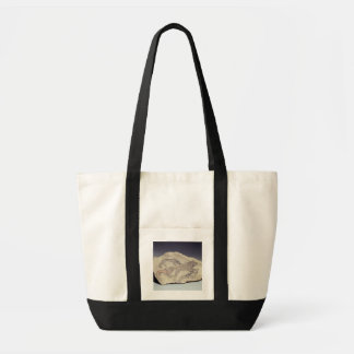 Ostracon depicting a dog chasing a hyena (limeston tote bag