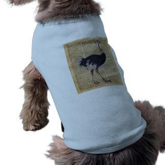 Ostrich Big Bird Animal Vintage Dictionary Art Shirt