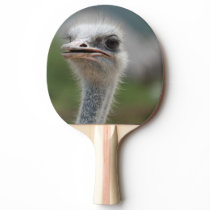 Ostrich Bird Ping-Pong Paddle