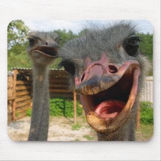 Ostrich Couple Mousepad