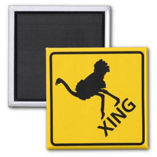 Ostrich Crossing Highway Sign Fridge Magnet