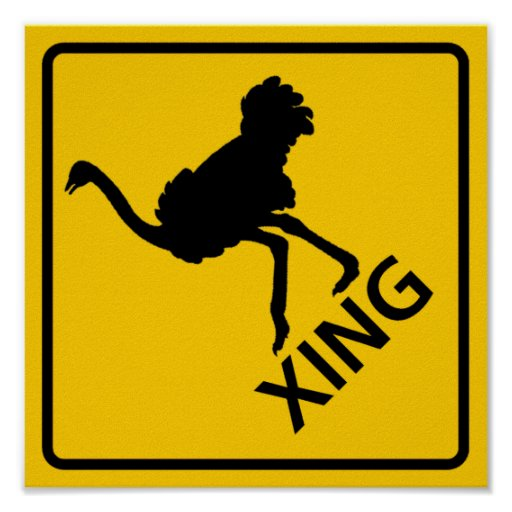 Ostrich Crossing Highway Sign Print