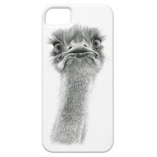 Ostrich expression sk053 iPhone 5 cover