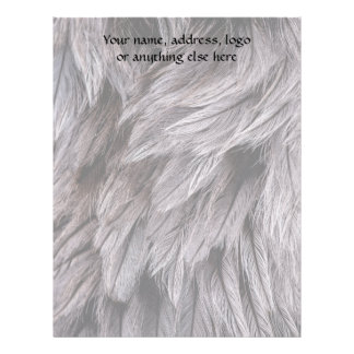 Ostrich Feathers Letterhead
