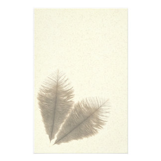 Ostrich feathers stationery