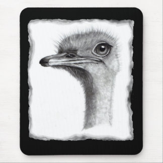 OSTRICH HEAD IN PENCIL: ART: REALISM MOUSE PAD