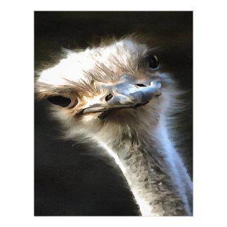 Ostrich Head Letterhead