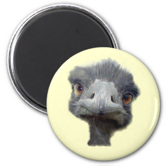 Ostrich head magnet