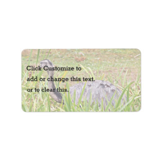 Ostrich In Grass Label