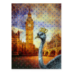 Ostrich in London Postcards