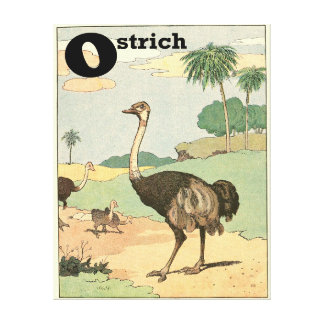 Ostrich in the Desert Savanna Alphabet Canvas Print