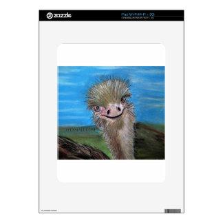 ostrich iPad decals