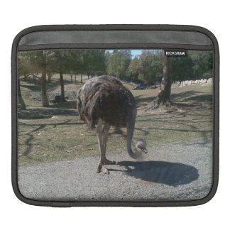 Ostrich iPad Sleeve