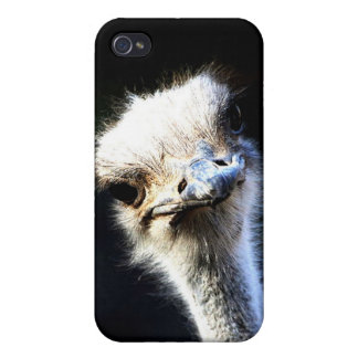 Ostrich iPhone 4/4S Case
