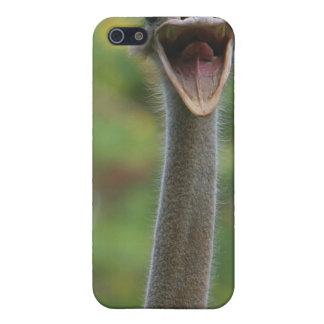 Ostrich iPhone Case 4