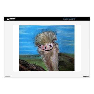 ostrich laptop decals