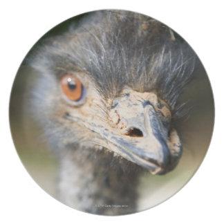 Ostrich Melamine Plate