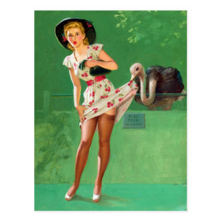 Ostrich Pin Up Post Card