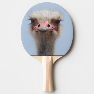 Ostrich Ping Pong Paddle