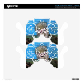ostrich PS3 controller skins