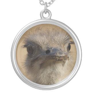 ostrich round pendant necklace