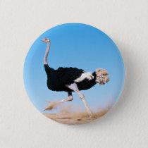 Ostrich Running Button