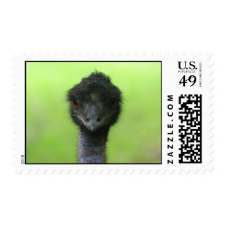 Ostrich Stamps