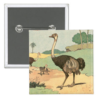 Ostrich Story Book Illustrated Pinback Button