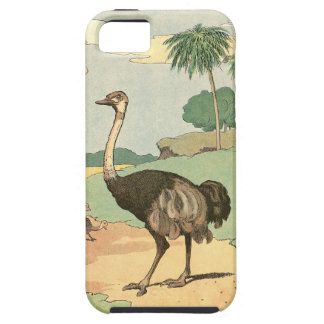 Ostrich Storybook Drawing iPhone 5 Cases