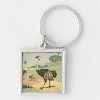 Ostrich Storybook Drawing Key Chain