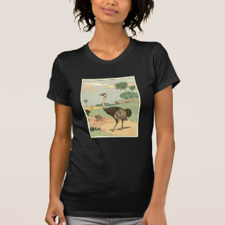 Ostrich Storybook Drawing T-shirts
