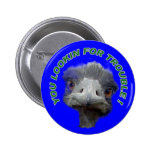Ostrich trouble pinback buttons