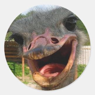 Ostrich What's Up Sticker