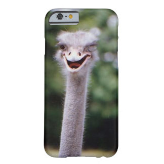 Ostrich Winking - Funny Barely There iPhone 6 Case