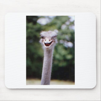 Ostrich Winking - Funny Mouse Pad